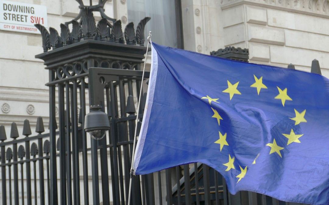 Brexit Support Scheme Regulations 2019